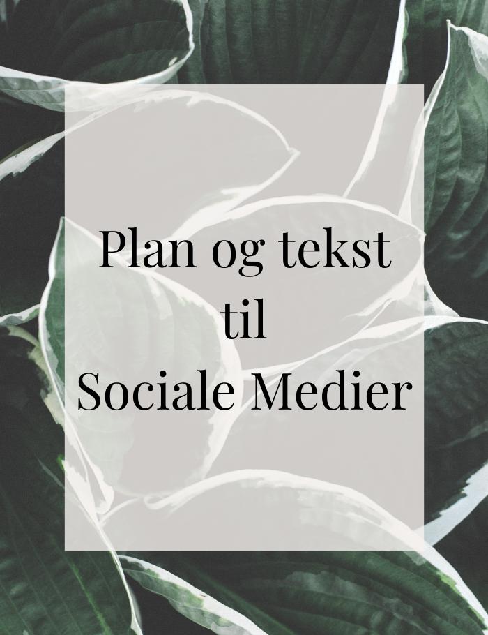 Instagram, Facebook, service, sociale medier, markedføring