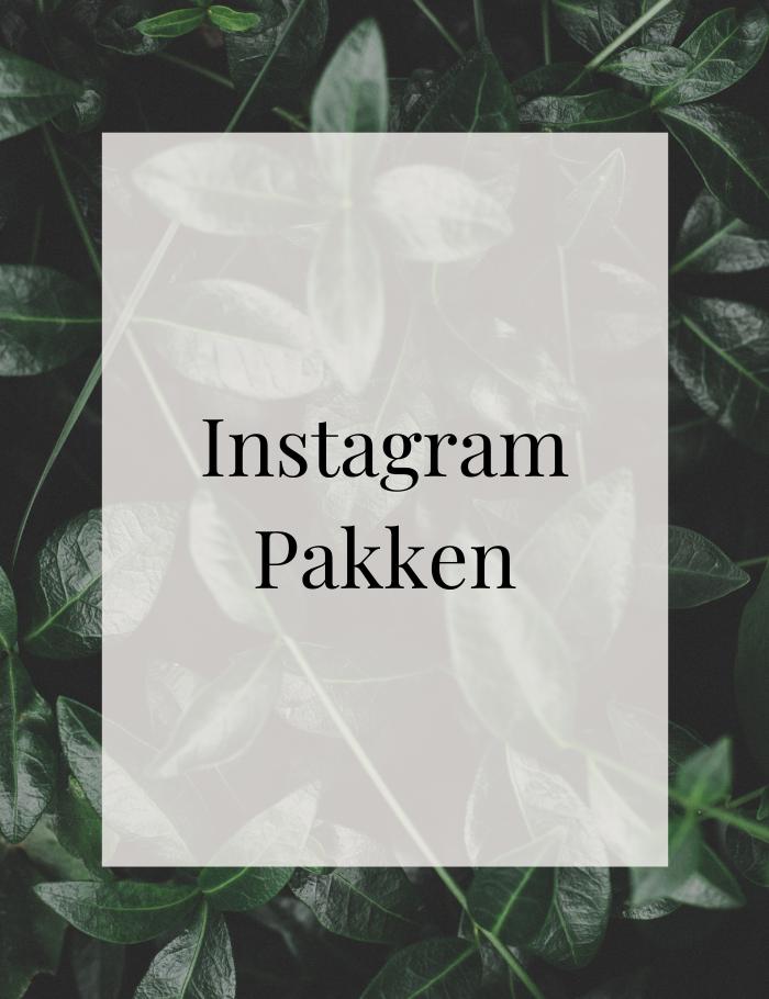 Instagram, service, sociale medier, markedføring